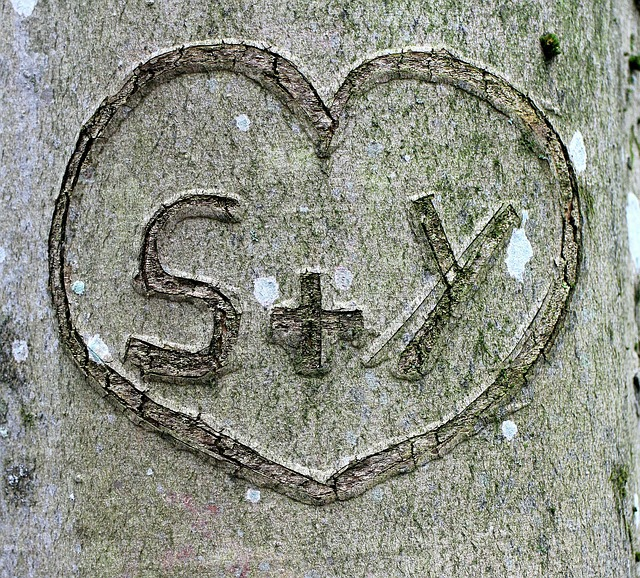 Jahrestag Beziehung - Baum verewigen