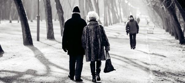Monogamie - dauerhafte Partnerschaften