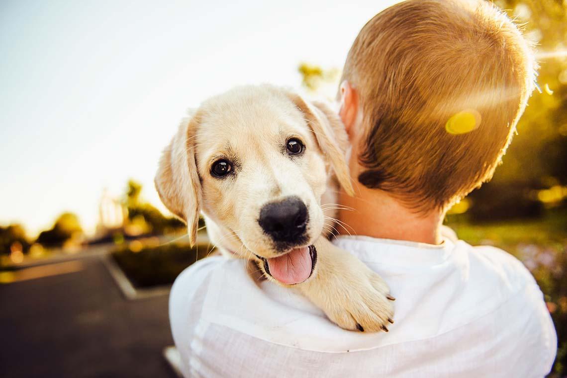 Mann mit Hund auf der Schulter