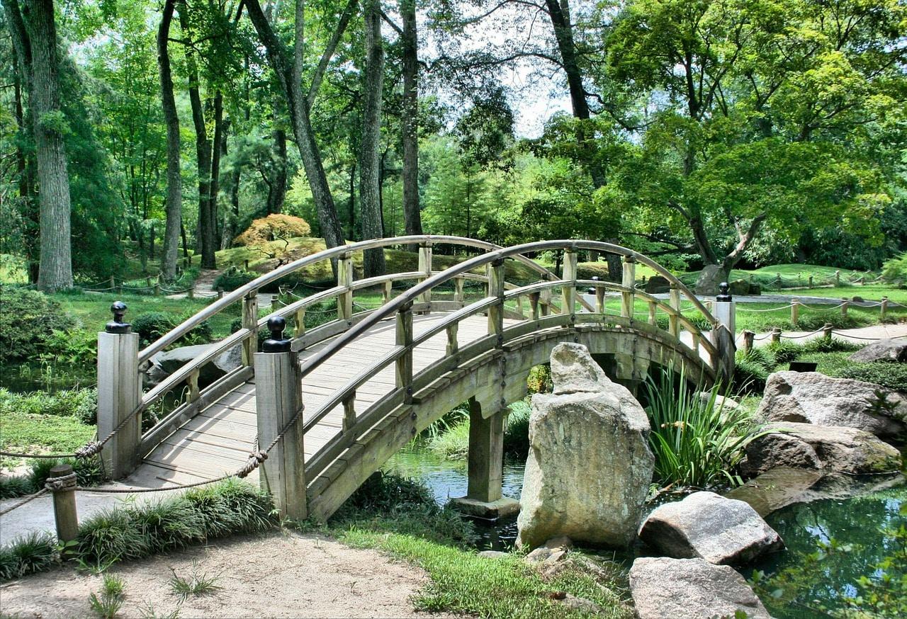 Steinbock Mann erobern - Park
