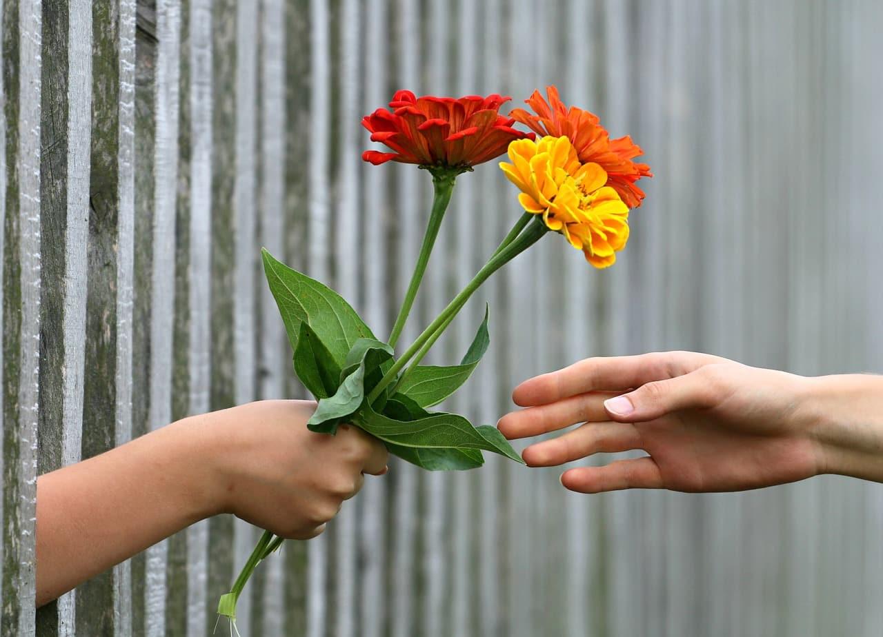 Vertrauen wieder aufbauen (4)