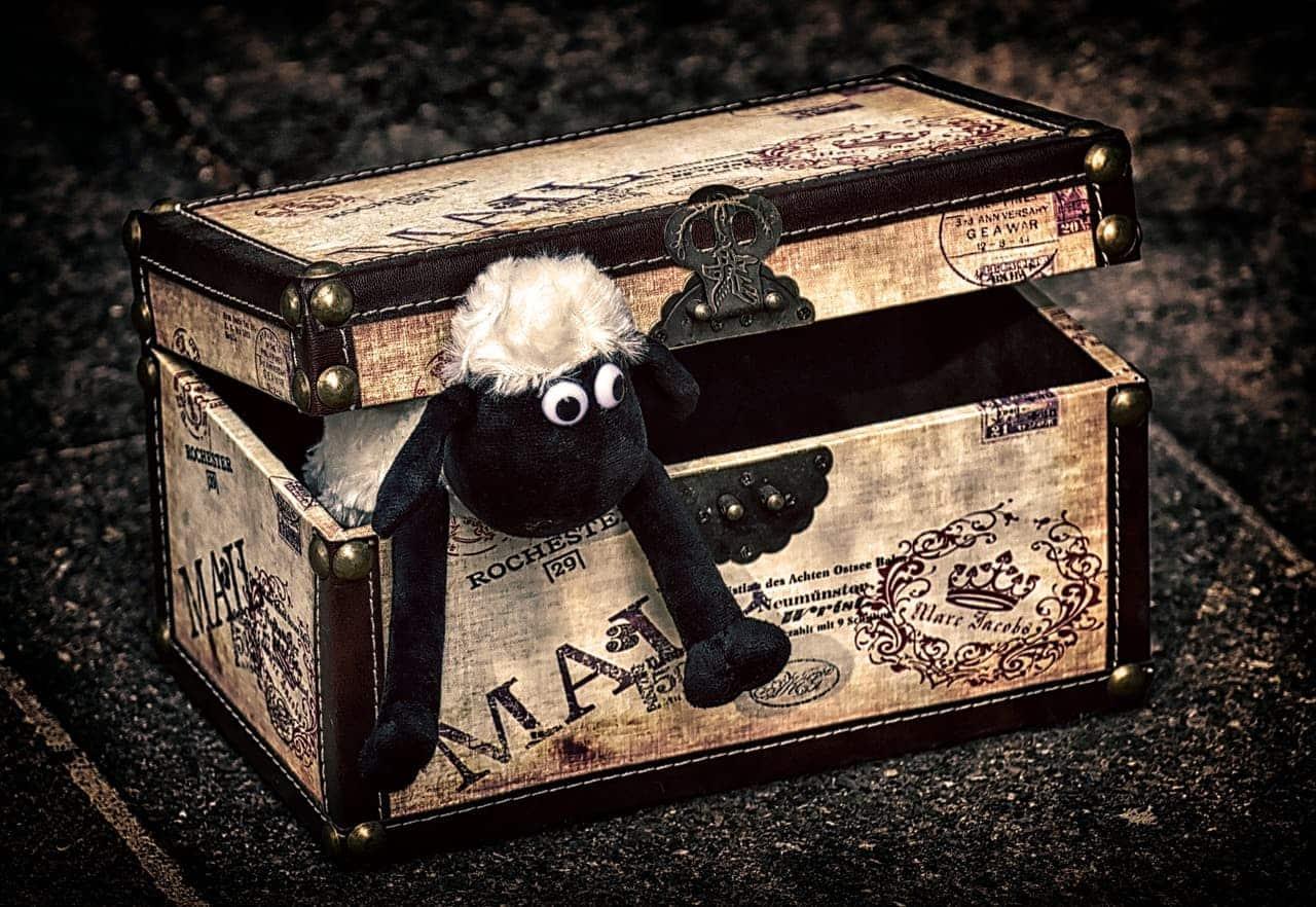 Gemeinsame Erinnerungen in Kiste verstauen