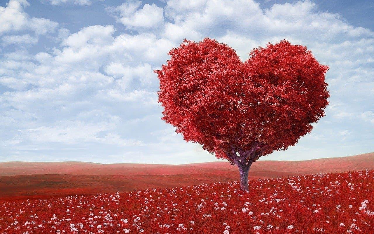 Perfekte Beziehung: Liebe zeigen